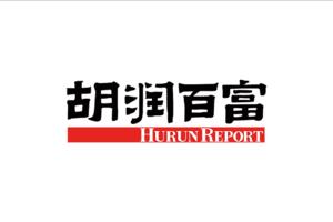 2020胡润百富榜(前100名)