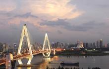 2020海口民营企业100强榜单
